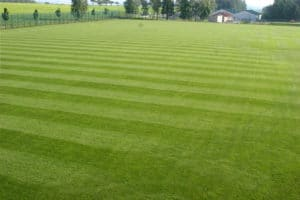 Rasenplatz des Fussball Trainingslager Sportschule Suedeifel